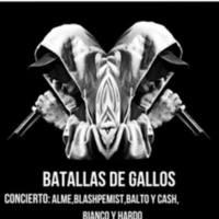20190700_batalla de gallos.jpg